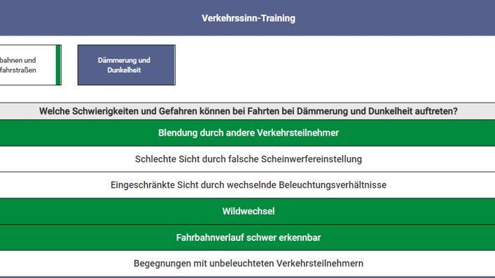 eLBe Verkehrssinntraining